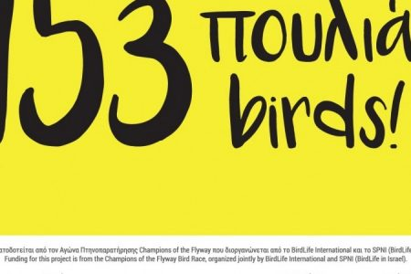153-Birds- blog cover photo trial_450_850_crp