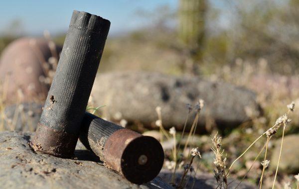 shotgun-shells-4655005_1920